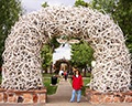 Antler Arch in Jackson,WY