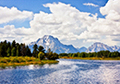 Oxbow Bend View