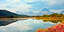 Oxbow Bend Sunrise View