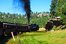 1880 Train in the Black Hills