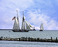 Lynx 1812 War Replica Schooner and Hindu in background